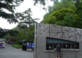 Brooklyn Botanic Garden, advice on moving to Brooklyn